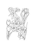 Fiore da colorare 164