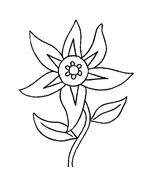 Fiore da colorare 165