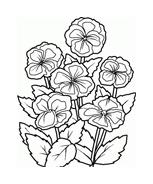 Fiore da colorare 171