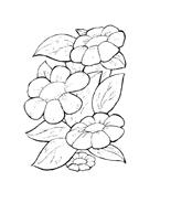 Fiore da colorare 176