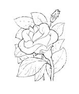 Fiore da colorare 180