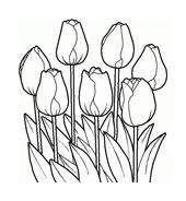 Fiore da colorare 182