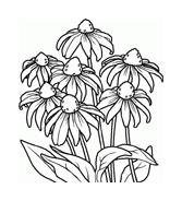 Fiore da colorare 185
