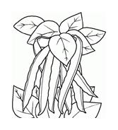 Fiore da colorare 186
