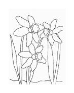 Fiore da colorare 190