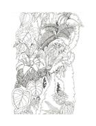 Fiore da colorare 198