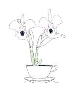 Fiore da colorare 206