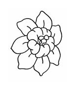 Fiore da colorare 207