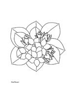 Fiore da colorare 213