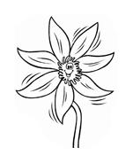 Fiore da colorare 215