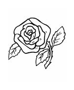 Fiore da colorare 240