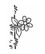 Fiore da colorare 241