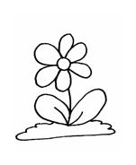 Fiore da colorare 246
