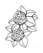 Fiore da colorare 263