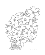 Fiore da colorare 264