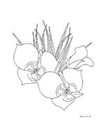Fiore da colorare 269