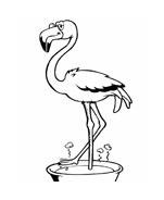 Uccello da colorare 150