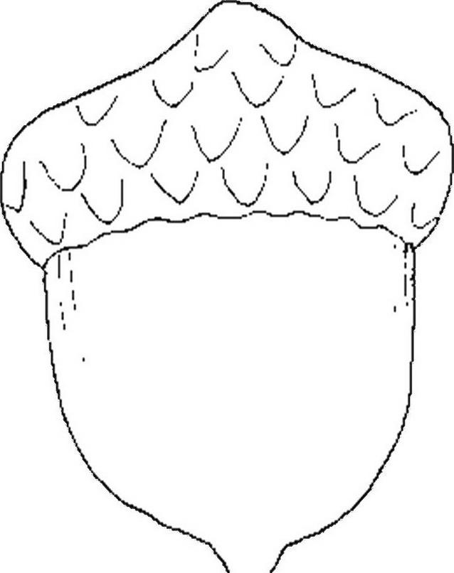 Frutto invernale da colorare 2