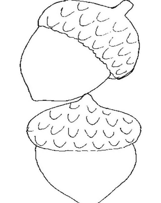 Frutto invernale da colorare 6