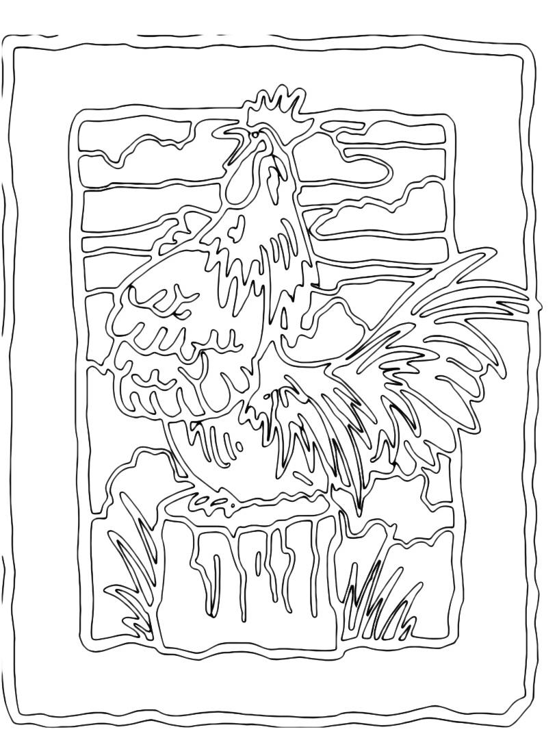 Gallina da colorare 36