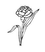 Fiore da colorare 275