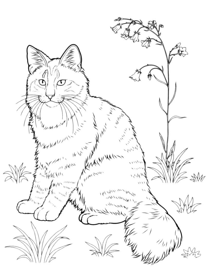 Gatto da colorare 25