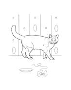 Gatti da colorare 35