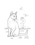 Gatti da colorare 38