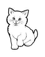Gatti da colorare 51