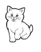 Gatti da colorare 73