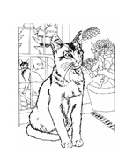 Gatti da colorare 74