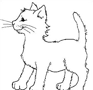 Gatto da colorare 81