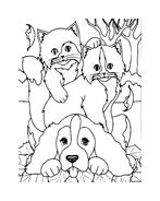 Gatti da colorare 86