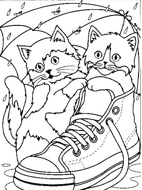 Gatto da colorare 87