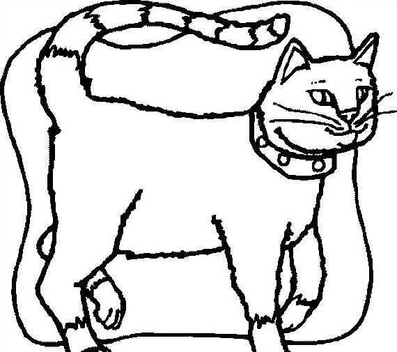 Gatto da colorare 90