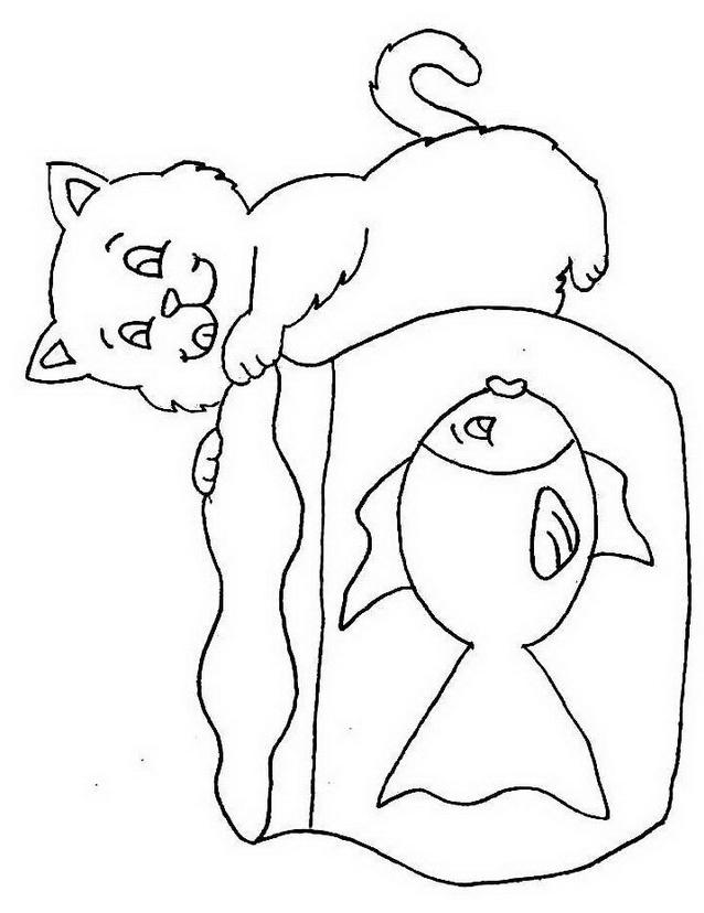 Gatto da colorare 109