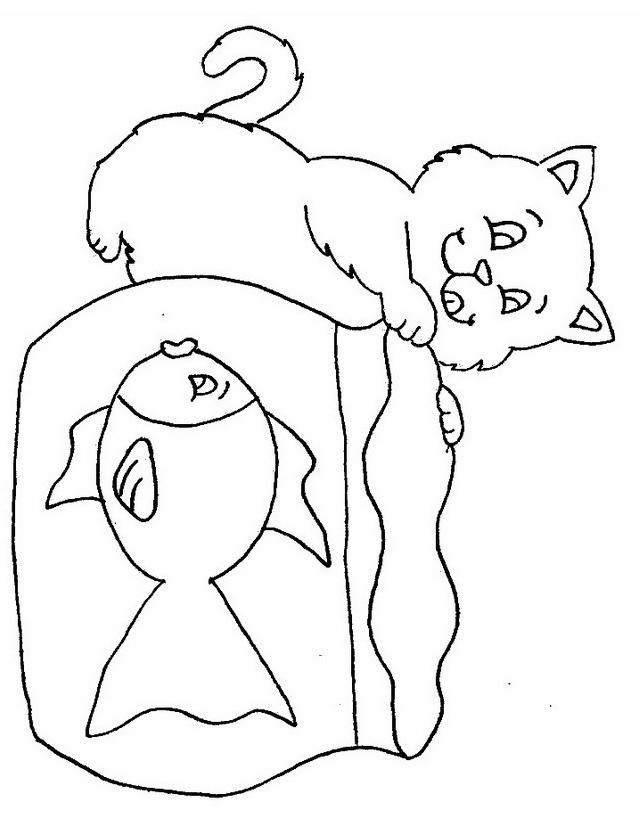Gatto da colorare 144