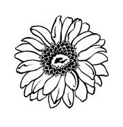 Fiore da colorare 285