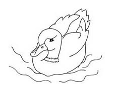 Uccello da colorare 164