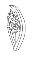 Fiore da colorare 287