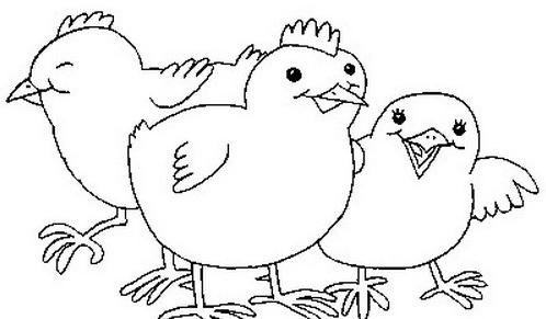 Uccello da colorare 167