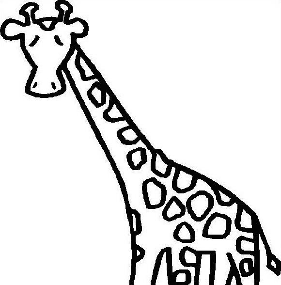Giraffa da colorare 6