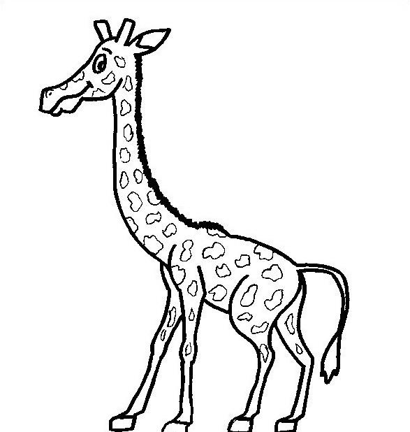 Giraffa da colorare 7