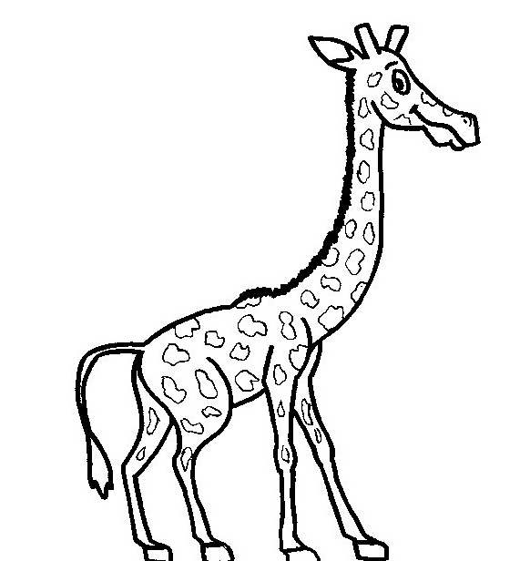 Giraffa da colorare 25