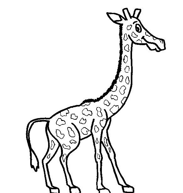 Giraffa da colorare 25