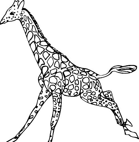 Giraffa da colorare 30