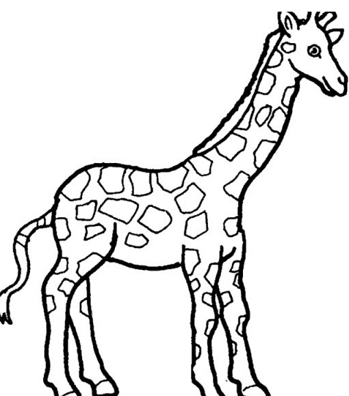 Giraffa da colorare 33