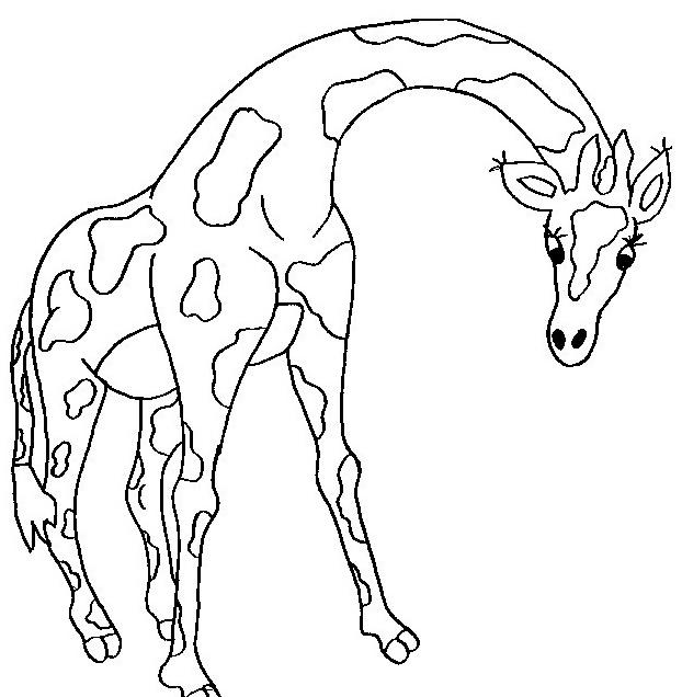 Giraffa da colorare 39