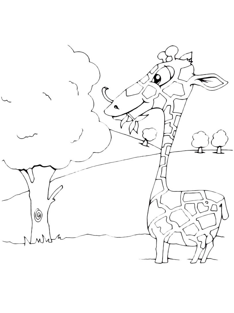 Giraffa da colorare 62