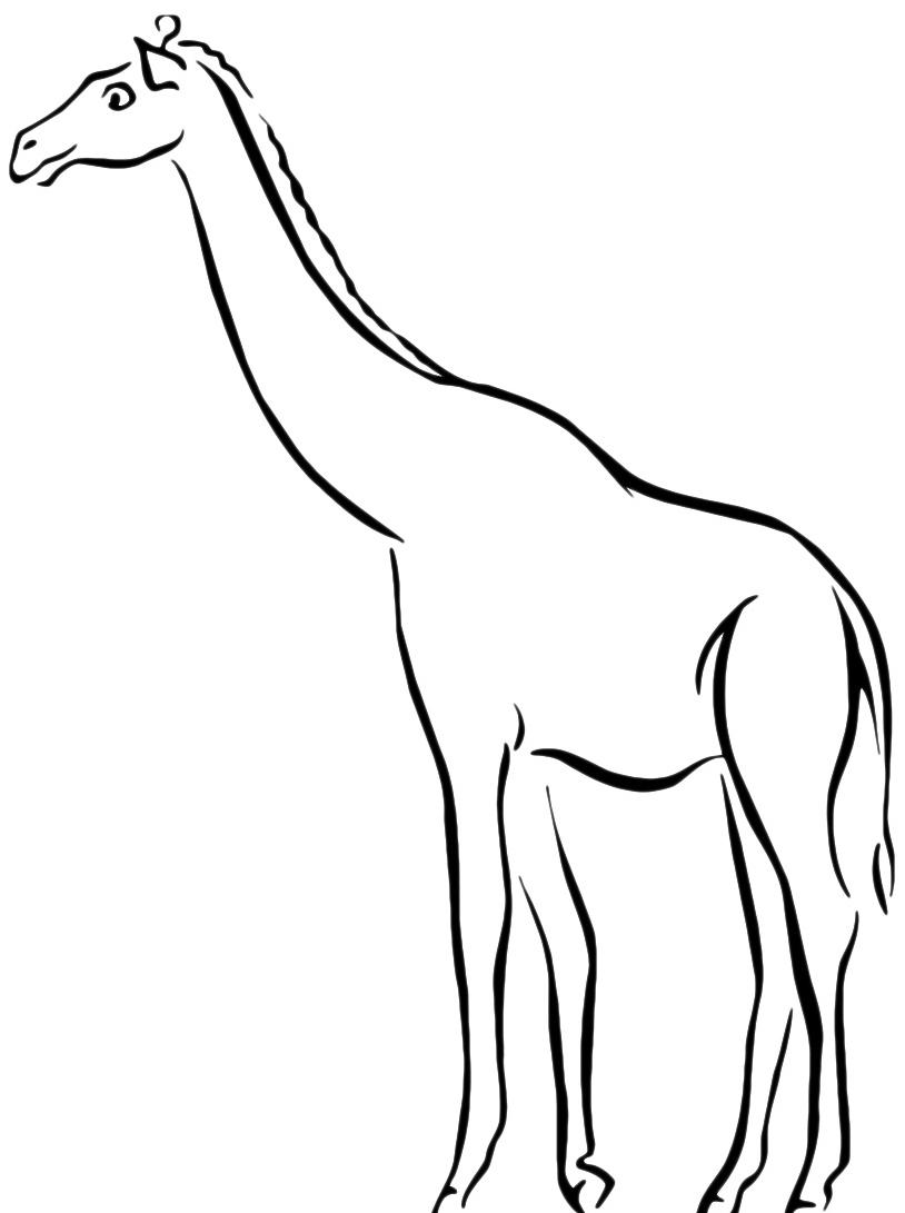 Giraffa da colorare 71